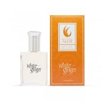 Key West Aloe - White Ginger