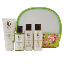 Mango Essentials To Go by Key West Aloe