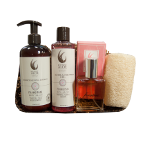 Frangipani Floral Favorites Gift Set from Key West Aloe