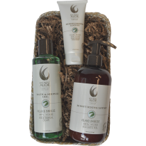 Cool Island Breeze Gift Basket from Key West Aloe