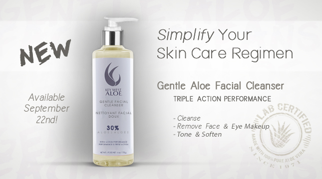 Simplify Your Skin Care Regimen Gentle Aloe Facial Cleanser